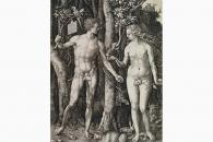 27325 Drer Adam und Eva-151