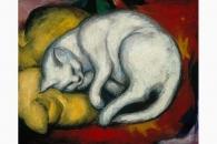 4640 Marc Die weisse Katze-126